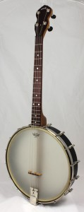 Hutchings Banjos standard 17 fret Tenor